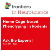 Home Cage-based Phenotyping in Rodents: Ask the Experts