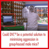 DVC® could potentially reduce aggression events within group housed male mice through spotted (on-demand) cage change